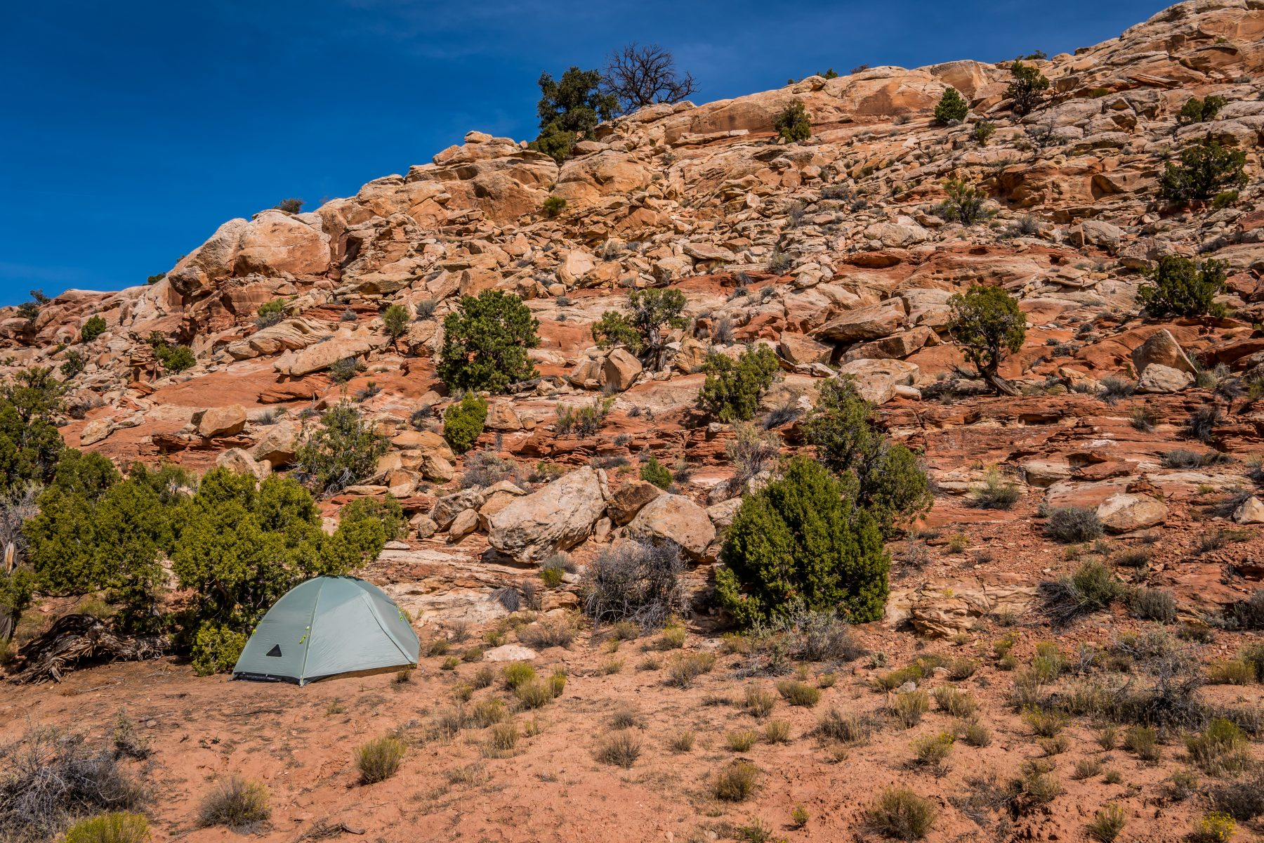 My beautiful campsite on BLM land just 20 feet outside of Arches National Park.